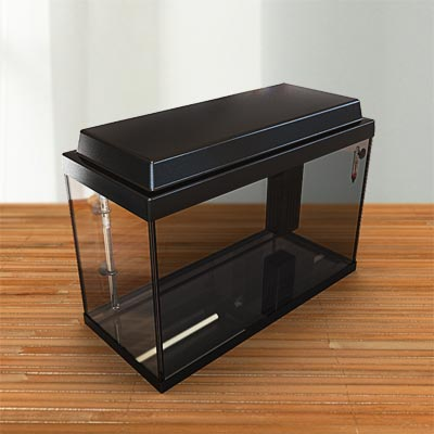 3D model of a Black empty glass aquarium