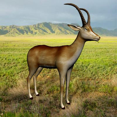 3D model of the Bluebuck