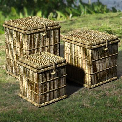 model: Three 3D cane boxes