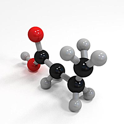 3D model of Butanoic acid molecule structure