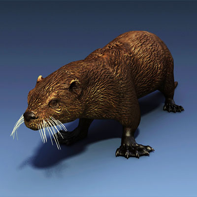 3D model of a Sea otter