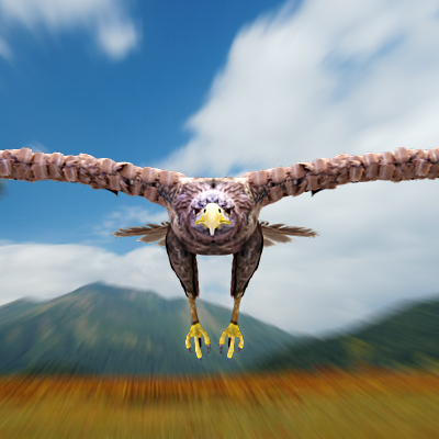 3D model of a Sea eagle