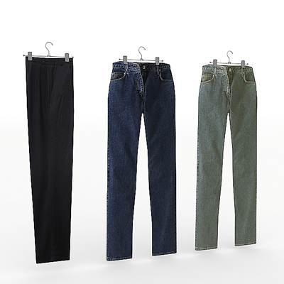 The 3D model of a Men's trousers set
