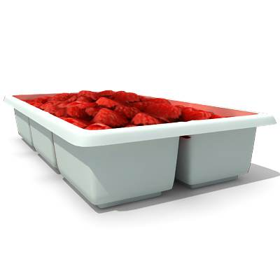 model: A 3D box of fresh raspberries