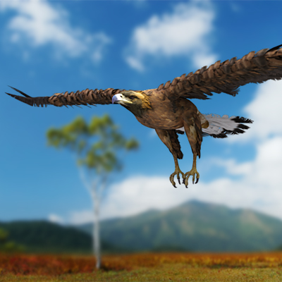 3D model of a Golden eagle