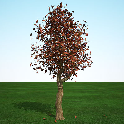 3D model of oak in fall