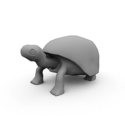 3D model of an elephant tortoise
