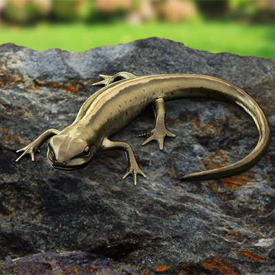 3D model of a Smooth Newt