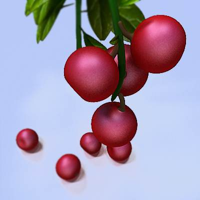 3D model of Lingonberry